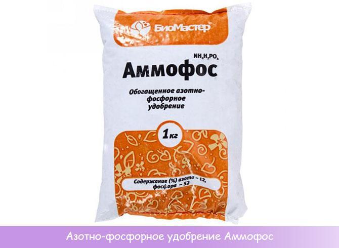 Азотно-фосфорный концентрат Аммофос