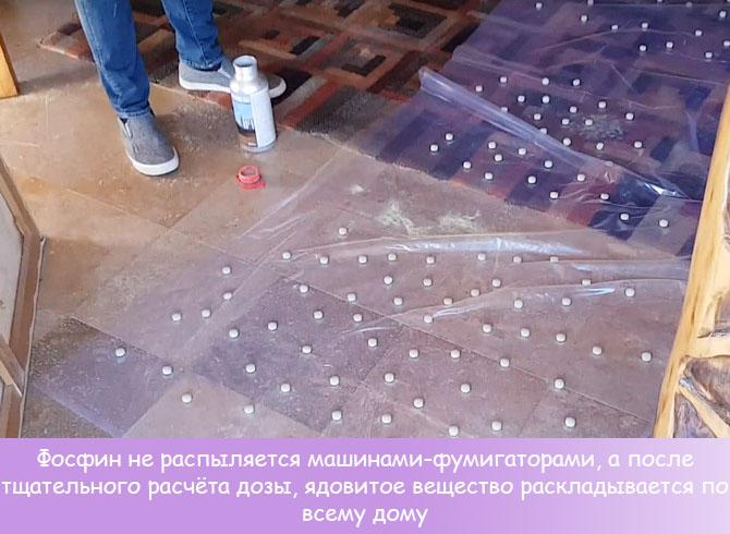 Фумигация дома фосфином