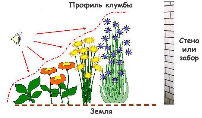 Многоуровневая высадка цветов