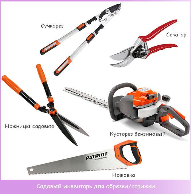 Инструменты для обрезки и стрижки деревьев и растений