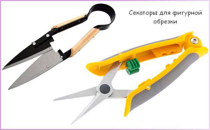 Ножницы для фигурной стрижки растений
