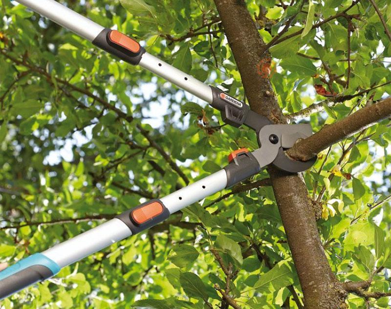Секатор телескопический для обрезки деревьев
