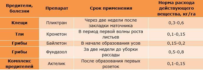 Календарь профилактических обработок клубники