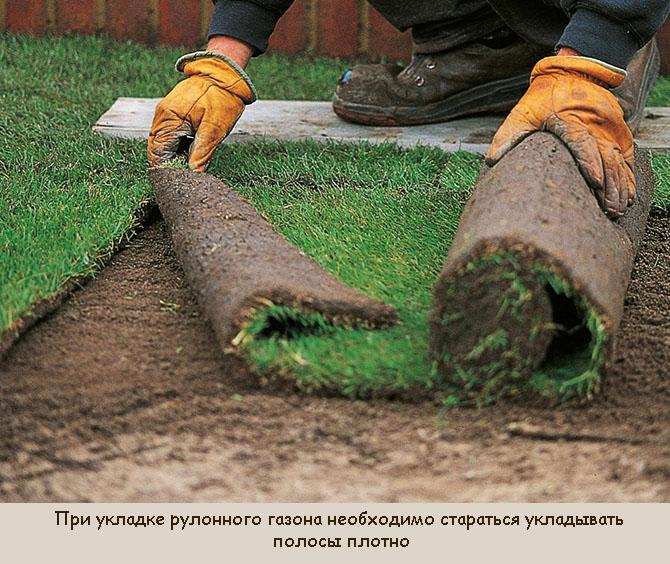Осенняя укладка рулонного газона